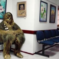 Los mejores 'memes' del accidente de Harrison Ford