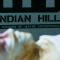 Gotham: ¿Qué son las misteriosas instalaciones de Indian Hill?