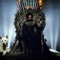 HBO confirma que Juego de Tronos acabará en la temporada 8