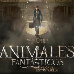 Animales fantásticos y dónde encontrarlos en Harry Potter