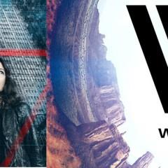 ¿Maeve de Westworld es La Máquina de Person of interest?