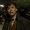 Tráiler final de 'Animales Fantásticos: Los Crímenes de Grindelwald'