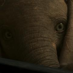 Disney: Nuevo tráiler y póster del live-action de 'Dumbo'